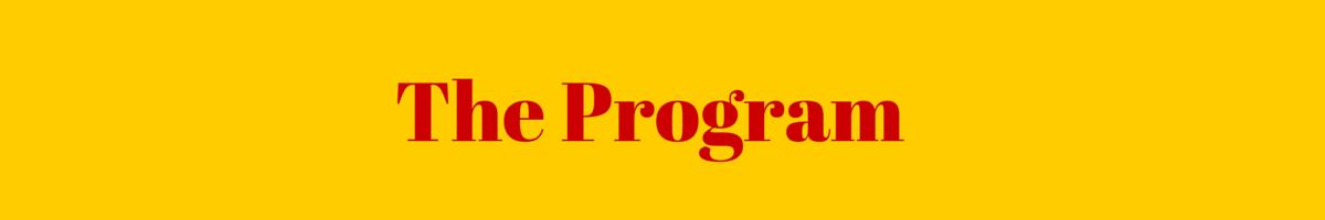 YHV_TheProgram_Banner_052415