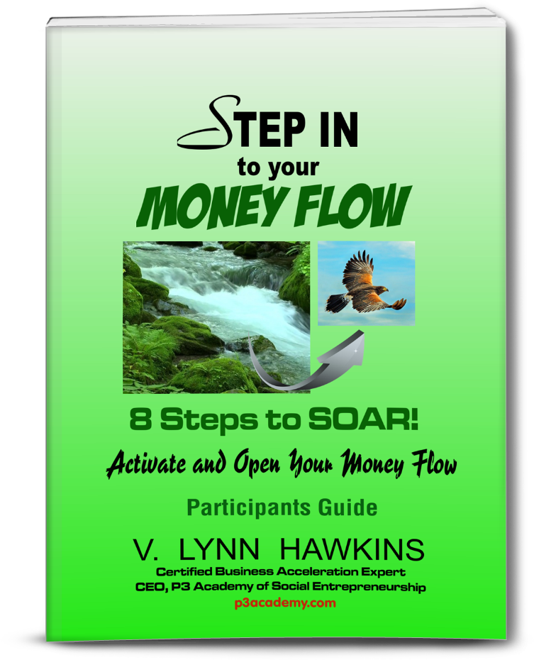 eCover_StepInMoneyFlow_ParticipGuide_Paperbackfront_753x930_113015
